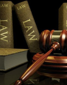 法律金融英语深度解析
