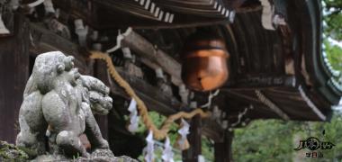 【东瀛风情】005期 日本神前式婚礼(一)