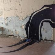 惊悚艺术:大白天也闹鬼!废弃医院的鬼魂壁画