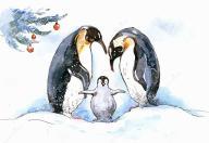 企鹅妈妈俱乐部