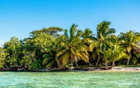 【法语新闻精读】第52期:马达加斯加,生态旅行的天堂