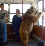 俄罗斯人的熊情结