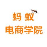 中原电商学院